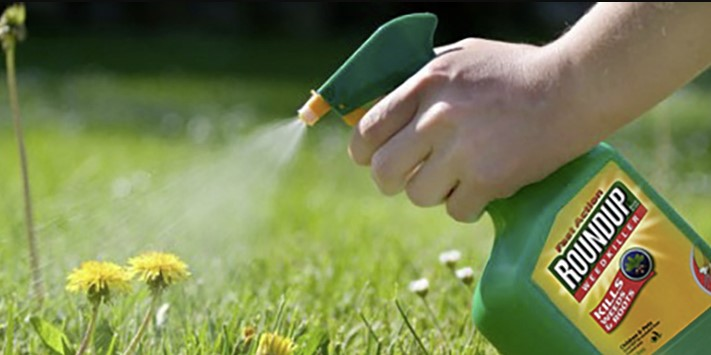 How long does it take Roundup to kill weeds? | InsightWeeds